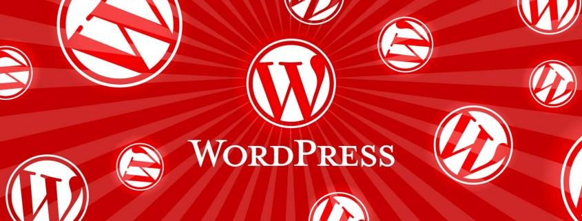 wordpress user guide graphic