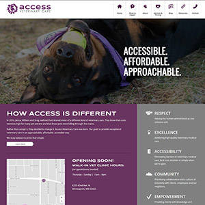 Vet Clinic 1 Day WordPress Website