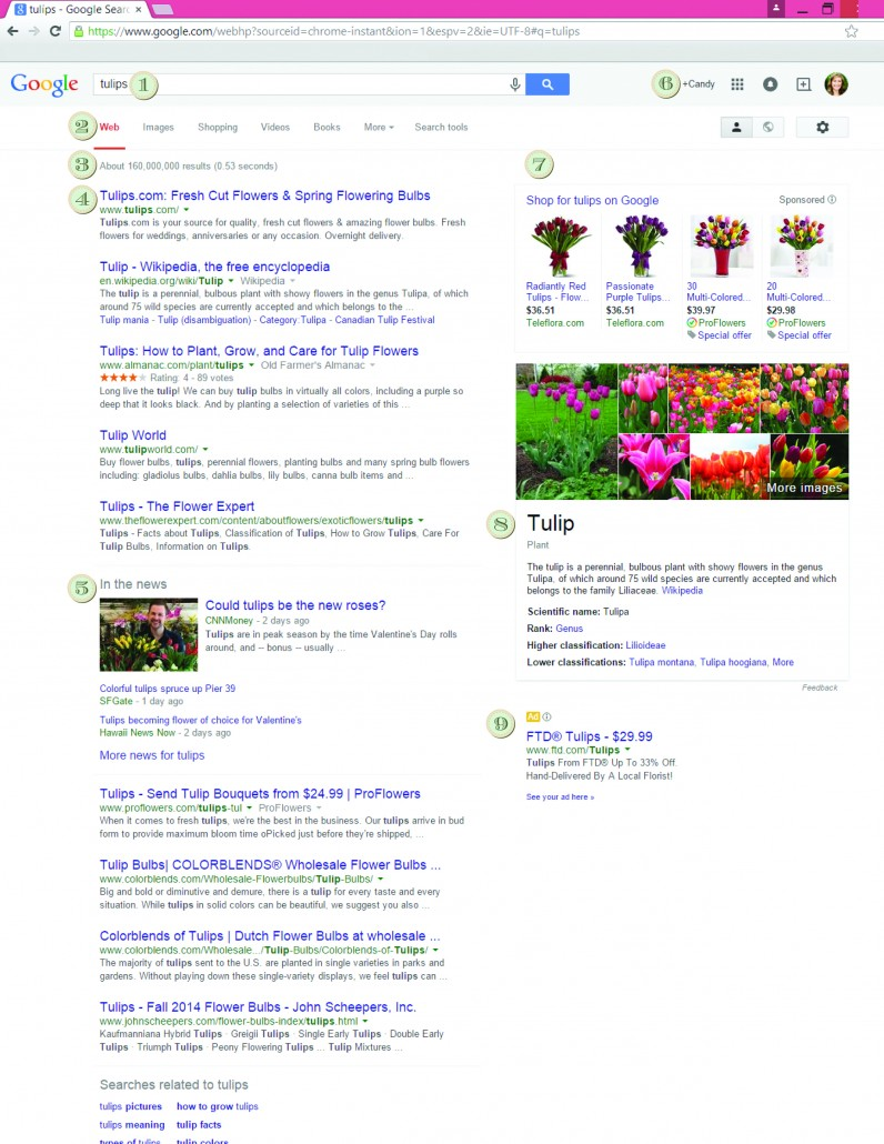 Anatomy of a Search Engine Results Page, The SERP | Bizzy Bizzy | An ...