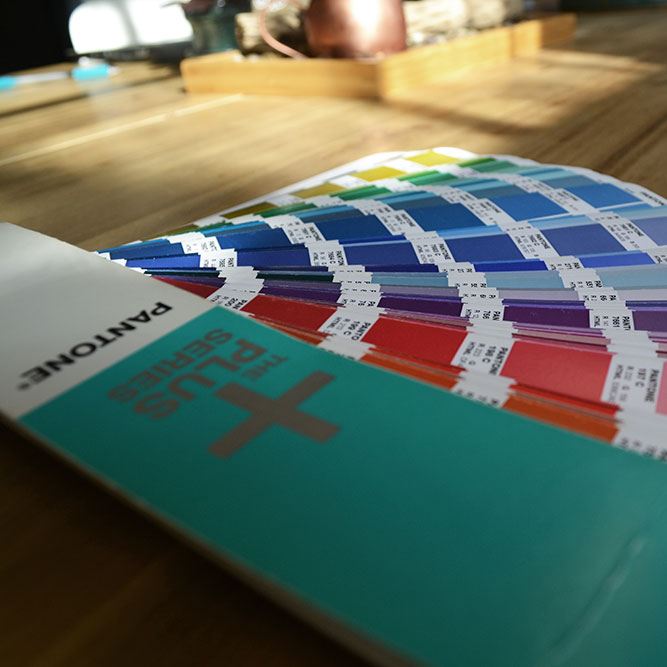 Bizzy Bizzy Pantone swatch book