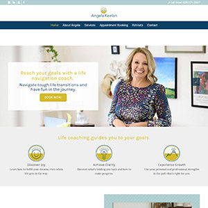 Career coach website - Bizzy Bizzy's 1 Day Website