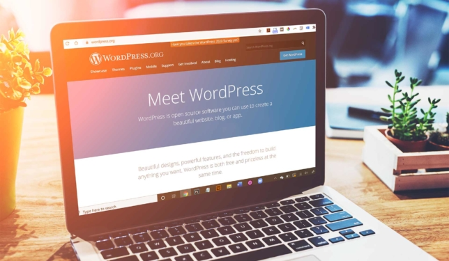 WordPress Website on a laptop